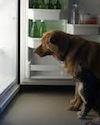 RefrigeratorImage
